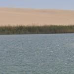 Sweet water lake