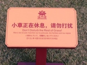 The Buddhist for Keep Off The Grass