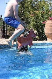 A young man jumps into a swimming pool, trying to catch a red plastic donkey.