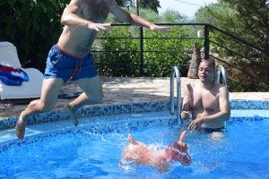 Leaping onto a donkey in a swimming pool