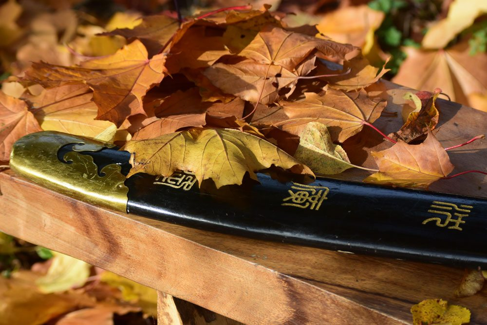autumn-scabbard-on-a-bench
