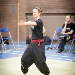 Action photo from the 2018 FWC Kung Fu & Tai Chi Club Patterns Competition